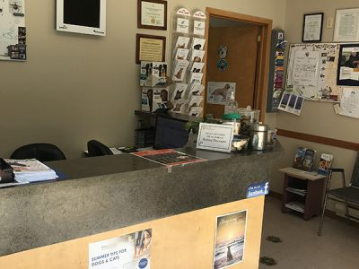 Windsor Clinic- Reception